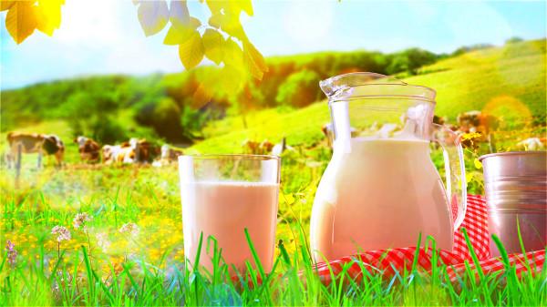 這類食物比牛奶還補鈣 吃法對了更健康