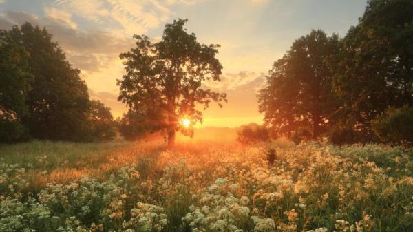 灵魂离开身体时,有时感觉跟做梦差不多。