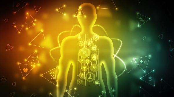 一項科學研究發現,在生物死後,體內的大量基因仍會持續活動。(示意圖/圖片來源:Adobe Stock)