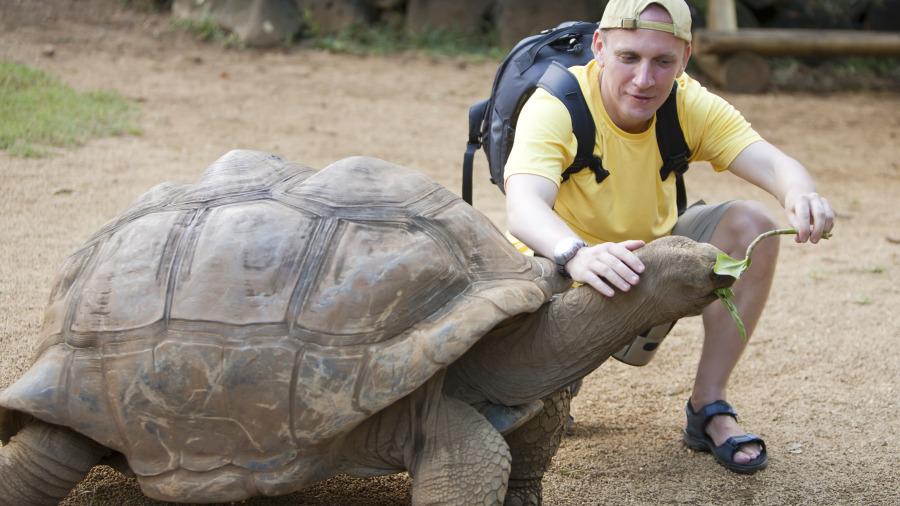 千年王八万年龟,这就是用来指长寿、时间久的意思。