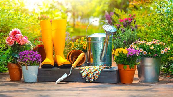 德國人願意花費數千歐元來維護自己的花園,而不是購買Burberry外套。
