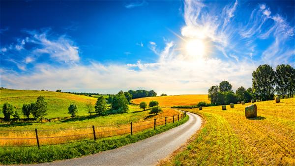 「春夏養陽,秋冬養陰」,夏季正是養陽的關鍵期。