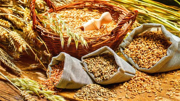 在日常生活中,我們要儘可能的達到穀物雜糧生活。