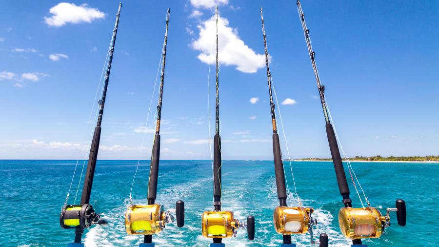 釣到無敵巨大魚,堪稱霸王,下一秒瞬間讓全場看到叫出聲!
