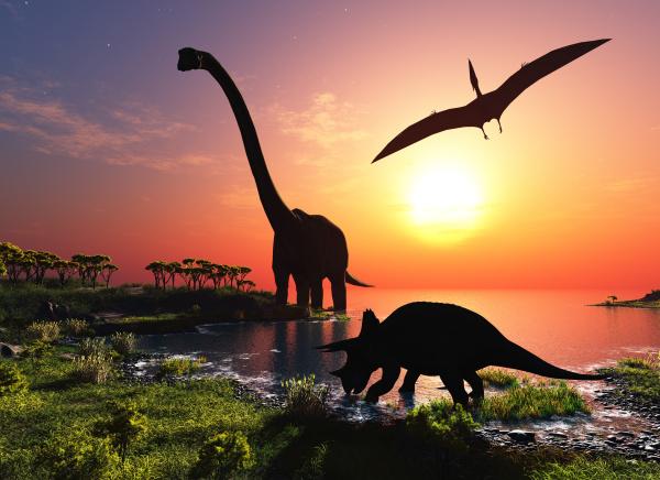 恐龙早在几千万年前就已群体灭绝了。