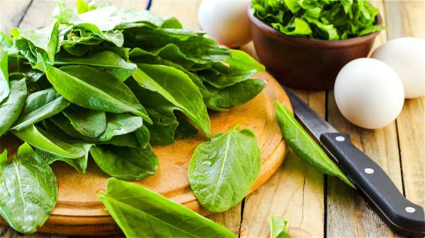 菠菜等綠色蔬菜富含各類維生素、礦物質和各種植物抗氧化成分,能給頭髮生長提供全面的營養。
