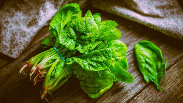 菠菜富含葉黃素和玉米黃質成分,能夠預防老年人的白內障、視網膜黃斑變性。