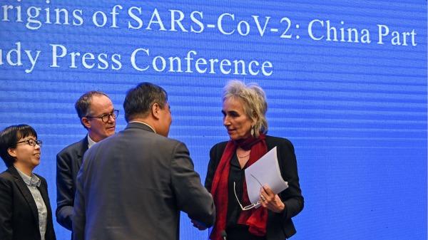 2021年2月9日,世界卫生组织专家组在武汉召开新闻会。图为世卫专家荷兰病毒学家库普曼斯 (Marion Koopmans)与中方人员握手。 (